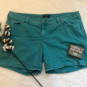 Silver Blue Shorts
